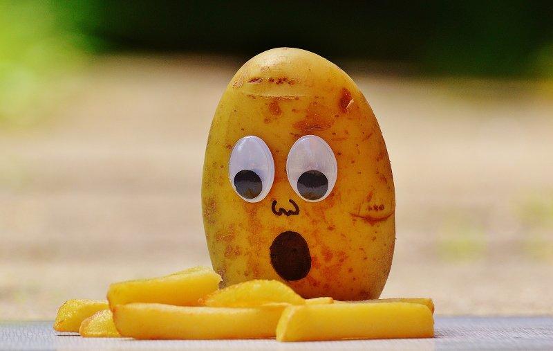 Gesunde Ernährung - selbstegemachte Pommes sind gesunder und die Kindern lernen etwas Neues (c) CCO Lizenz, Pixabay, Alexas_Fotos